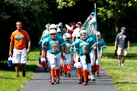 Westerville Bronco Dolphins